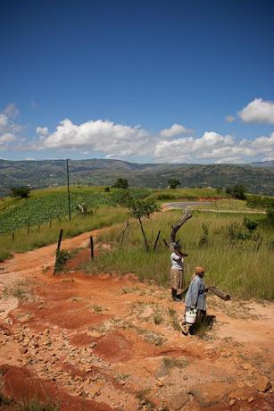Women, Mbabane, Swaziland, 2005.