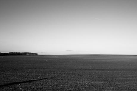 Field, Grand-Leez, Belgium, 2009.
