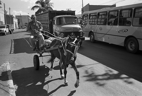Man with horse and cart. Anápolis, Brazil. 2008.