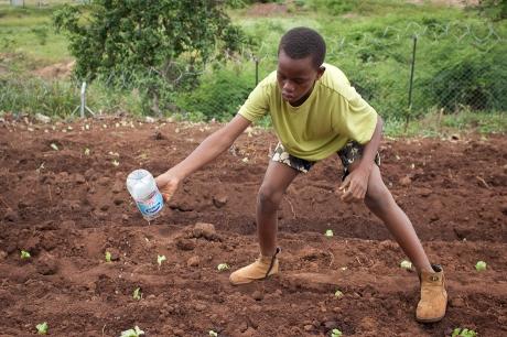 Watering. Swaziland. 2005.